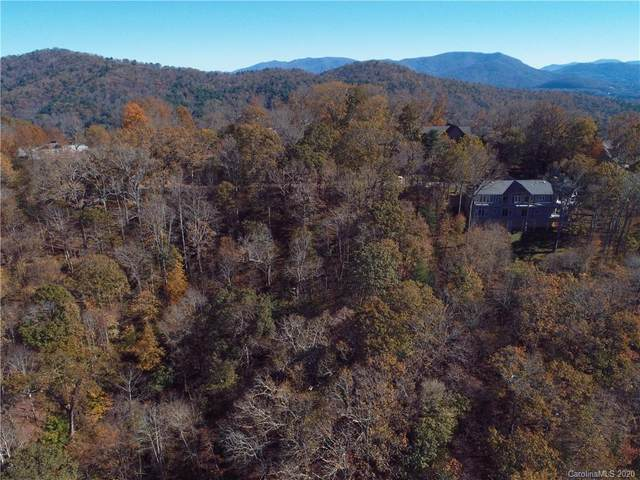 9999 Trailridge Road, Asheville, NC 28804 (#3678586) :: Keller Williams Professionals