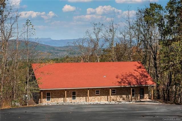 262 Briar Ridge Lane, Nebo, NC 28761 (#3679098) :: Austin Barnett Realty, LLC
