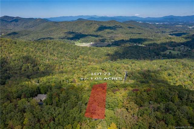 1166 Mills River Way #73, Mills River, NC 28742 (#3679353) :: Ann Rudd Group