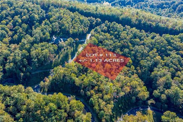 Lot 113 Blue Mountain Way #113, Mills River, NC 28742 (#3679744) :: Ann Rudd Group