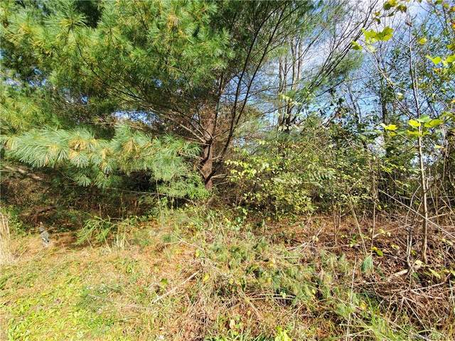 1050 Oakdale Court, China Grove, NC 28023 (#3679813) :: Mossy Oak Properties Land and Luxury
