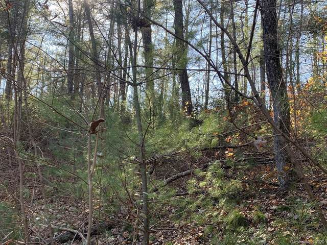 Lot 83 Mountain Home Trail #83, Brevard, NC 28712 (#3679916) :: The Premier Team at RE/MAX Executive Realty