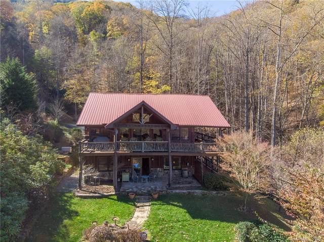 431 Wild Turkey Drive, Whittier, NC 28789 (#3680569) :: BluAxis Realty