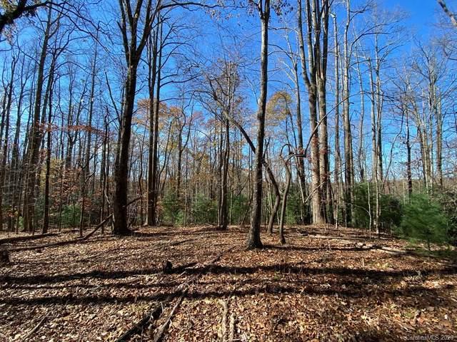 TBD Steel Creek Road, Brevard, NC 28712 (#3680924) :: Ann Rudd Group