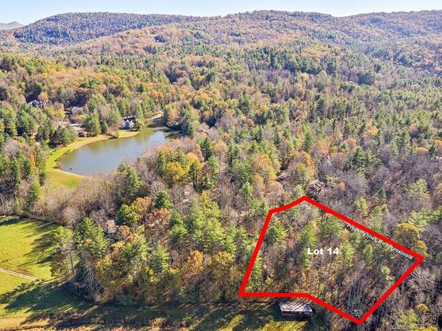 LOT 14 Mountain Lakes Drive, Flat Rock, NC 28739 (#3681179) :: Bigach2Follow with Keller Williams Realty