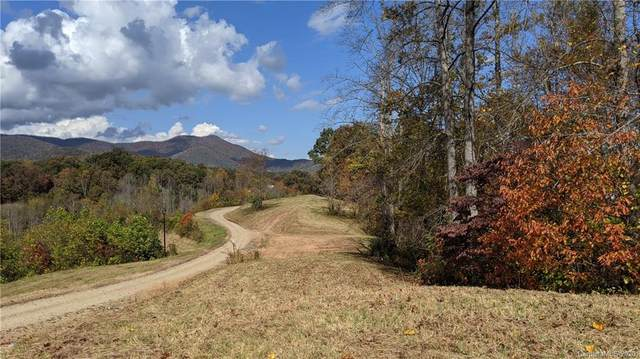 Lot #2 S Lindon Cove Road, Candler, NC 28715 (#3681679) :: Keller Williams Professionals