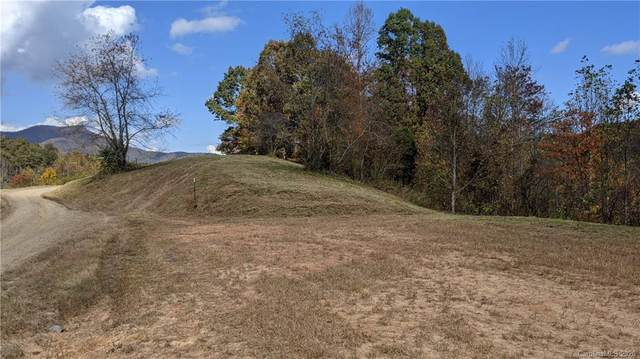 Lot #4 S Lindon Cove Road, Candler, NC 28715 (#3681704) :: Keller Williams Professionals