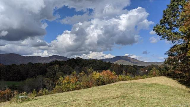 Lot #5 S Lindon Cove Road, Candler, NC 28715 (#3681712) :: Keller Williams Professionals