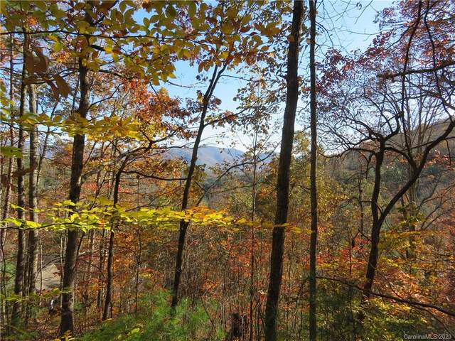 201 Patriots Drive #1, Asheville, NC 28805 (#3681992) :: Mossy Oak Properties Land and Luxury