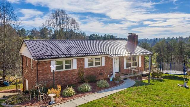 229 Allman Hill Road, Weaverville, NC 28787 (#3682065) :: LePage Johnson Realty Group, LLC