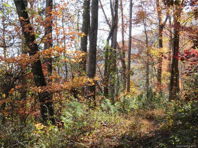 217 Patriots Drive #4, Asheville, NC 28805 (#3682587) :: Mossy Oak Properties Land and Luxury