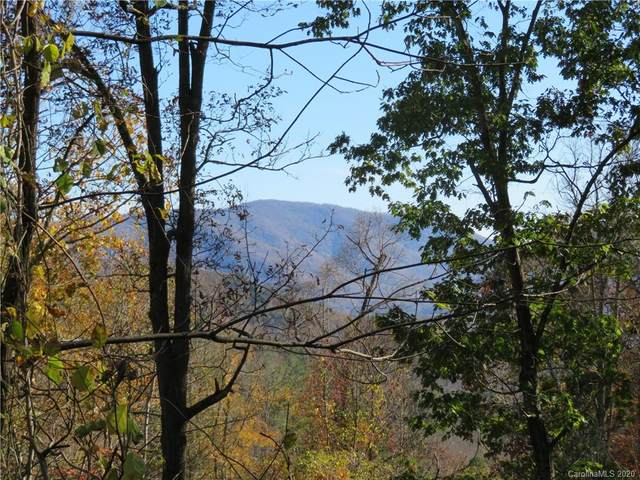 8 Margaret Lane #4, Asheville, NC 28805 (#3682590) :: Mossy Oak Properties Land and Luxury