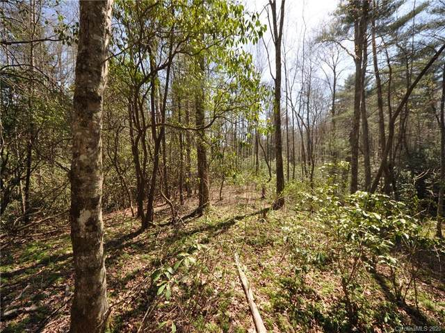LOT 419 Prickly Briar Road, Hendersonville, NC 28739 (#3682832) :: Keller Williams Professionals
