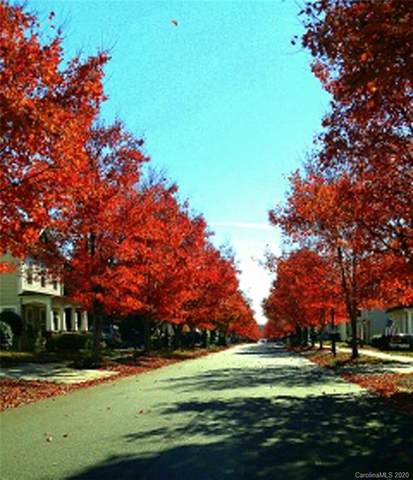 9538 Glenashley Drive, Cornelius, NC 28031 (#3682905) :: Mossy Oak Properties Land and Luxury