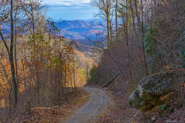 TBD Blackberry Drive, Blowing Rock, NC 28607 (#3683419) :: Keller Williams South Park