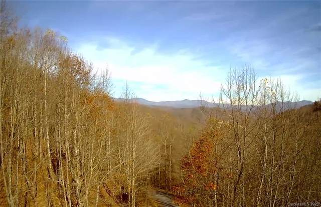Lot 124 Atlantic Falls Trail #124, Black Mountain, NC 28711 (#3684903) :: MartinGroup Properties