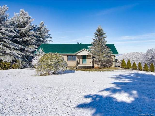 2465 Ogle Meadows Road, Burnsville, NC 28714 (#3684942) :: LKN Elite Realty Group | eXp Realty