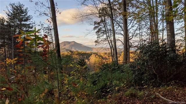Lot #18 S Lindon Cove Road, Candler, NC 28715 (#3684957) :: Keller Williams Professionals