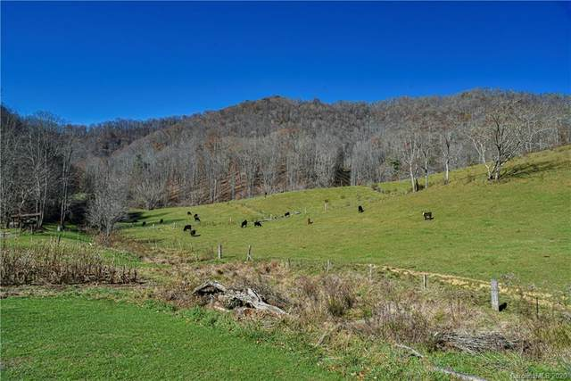 1142 Ponder Creek Road, Mars Hill, NC 28754 (#3685241) :: MOVE Asheville Realty