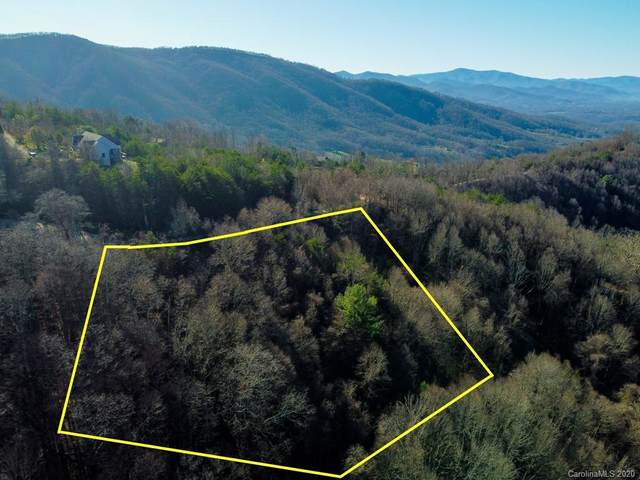 #65 Hunters Ridge Road, Canton, NC 28716 (#3685299) :: Scarlett Property Group