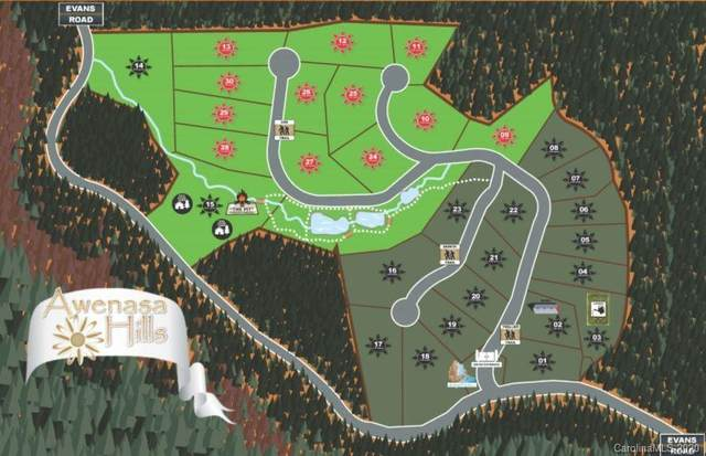 Lot 16 Trellem Trail #16, Hendersonville, NC 28739 (#3685422) :: Keller Williams Professionals