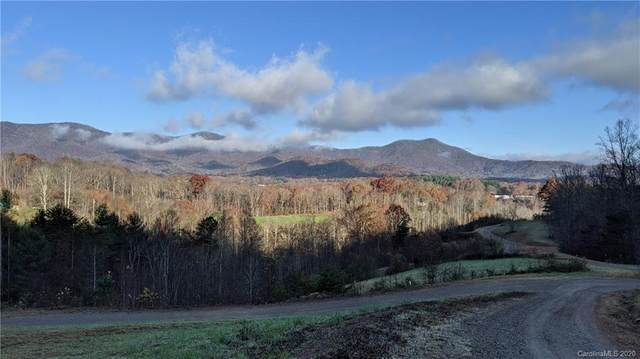 Lot #14 S Lindon Cove Road, Candler, NC 28715 (#3685545) :: Keller Williams Professionals