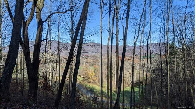 Lot #16 S Lindon Cove Road, Candler, NC 28715 (#3685566) :: Keller Williams Professionals