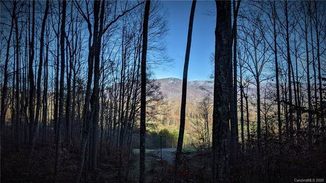 Lot #17 S Lindon Cove Road, Candler, NC 28715 (#3685570) :: NC Mountain Brokers, LLC