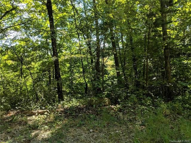 Lot 24 Bald Eagle Drive Lot  #24, Hendersonville, NC 28792 (#3685606) :: SearchCharlotte.com
