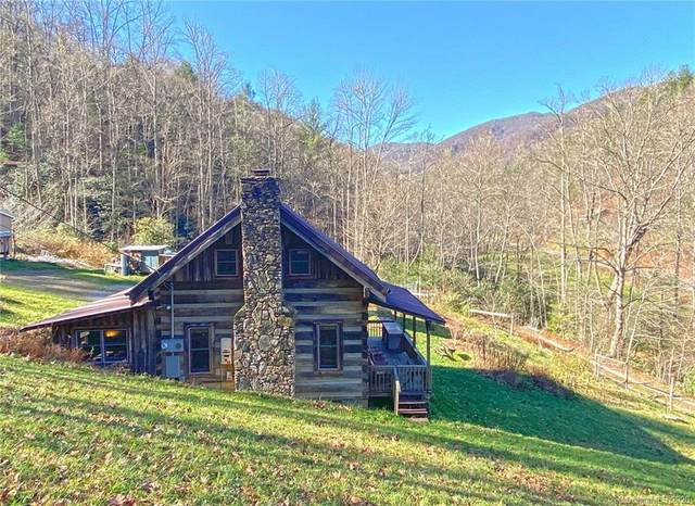 2767 Meadow Fork Road, Hot Springs, NC 28743 (#3685619) :: MOVE Asheville Realty
