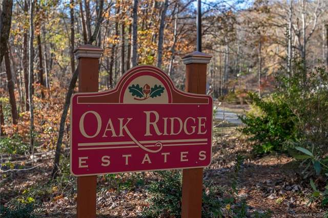 00 Duck Pond Lane 36, 45, Columbus, NC 28722 (#3685794) :: LePage Johnson Realty Group, LLC