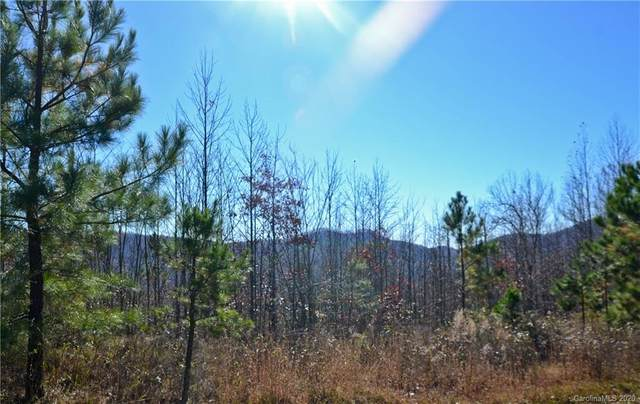 000 Scenic Vista Drive #256, Nebo, NC 28761 (#3685842) :: Homes with Keeley | RE/MAX Executive