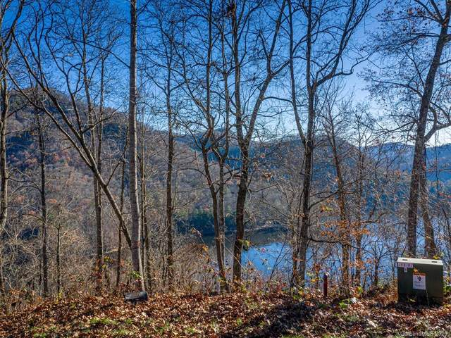 Lot 223 Lilywood Court, Tuckasegee, NC 28783 (#3686084) :: The Premier Team at RE/MAX Executive Realty