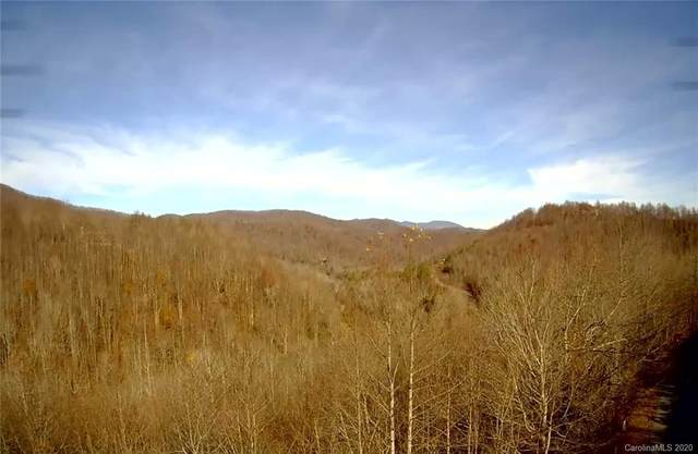 Lot 138 Arcadia Falls Way, Black Mountain, NC 28711 (#3686542) :: MartinGroup Properties