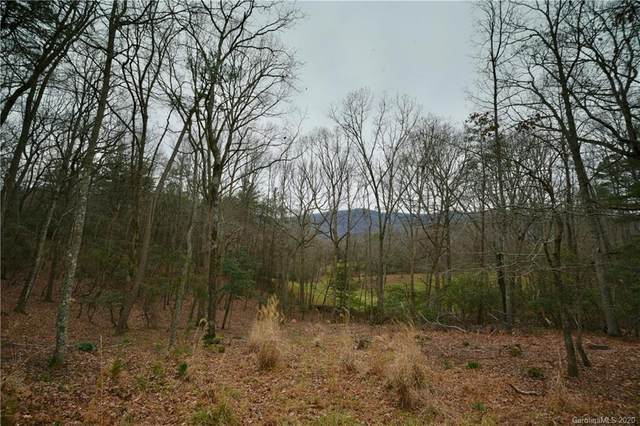 1523 Country View Way #300, Arden, NC 28704 (#3686558) :: Homes with Keeley | RE/MAX Executive
