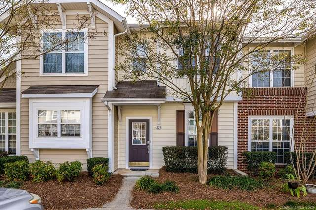 921 Azurine Circle, Fort Mill, SC 29708 (#3686563) :: Rowena Patton's All-Star Powerhouse