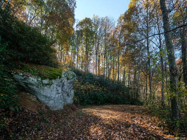 9 Flora Rose Trail Tract 1, Asheville, NC 28803 (#3686724) :: The Premier Team at RE/MAX Executive Realty
