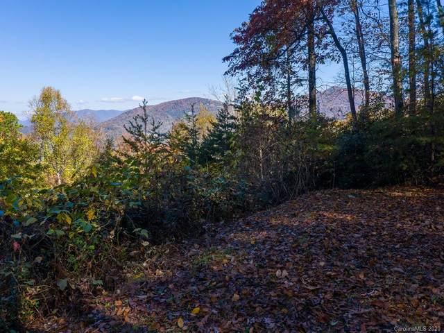 19 Flora Rose Trail, Asheville, NC 28803 (MLS #3686744) :: RE/MAX Journey