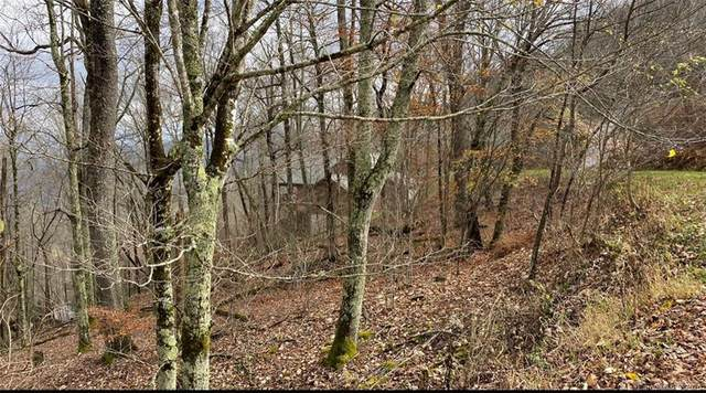 35 Overlook Drive #35, Mars Hill, NC 28754 (#3687083) :: MOVE Asheville Realty