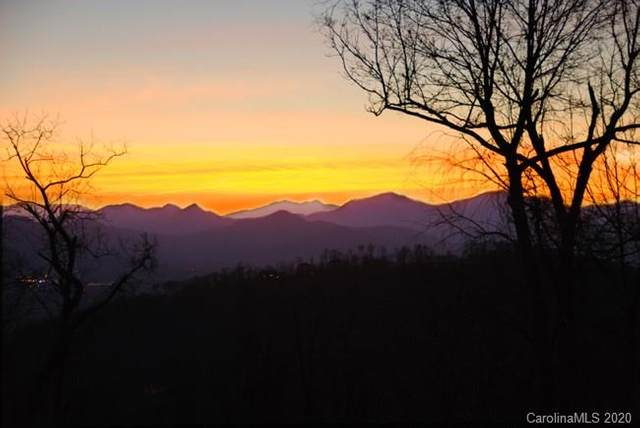 99999 Elk Mountain Scenic Highway #6, Asheville, NC 28804 (#3687130) :: MOVE Asheville Realty