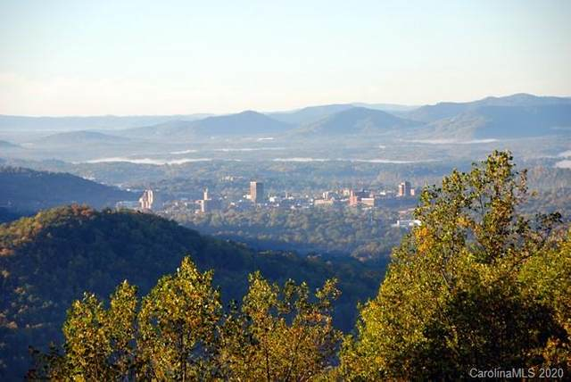 550 Elk Mountain Scenic Highway 16-25, Asheville, NC 28804 (#3687134) :: MOVE Asheville Realty