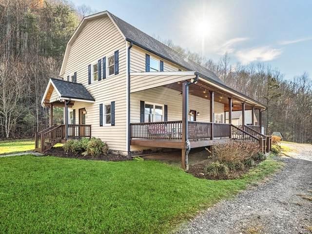 31 Davidson Gap Road, Leicester, NC 28748 (#3687282) :: NC Mountain Brokers, LLC