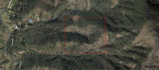 Off Edney Inn Road, Hendersonville, NC 28792 (#3687310) :: Carolina Real Estate Experts