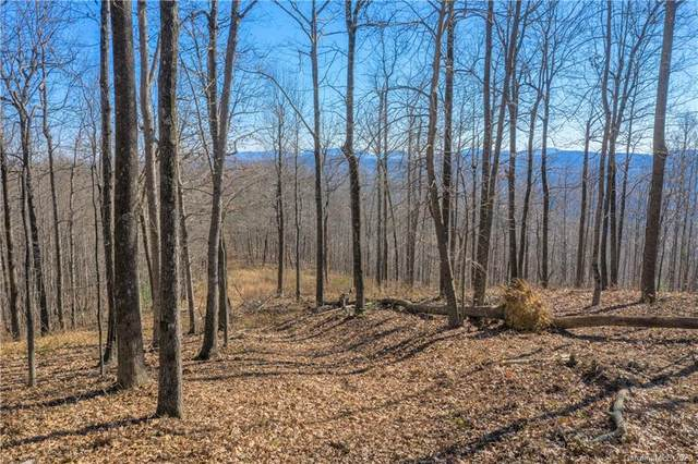 0000 Pinnacle Mountain Road #1, Zirconia, NC 28790 (#3687358) :: Odell Realty