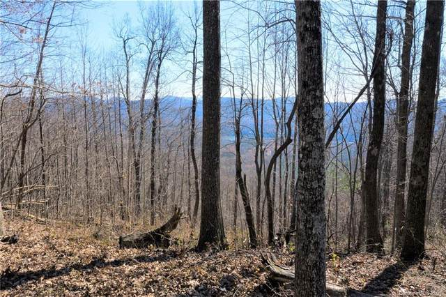 0000 Pinnacle Mountain Road #2, Zirconia, NC 28790 (#3687384) :: Odell Realty
