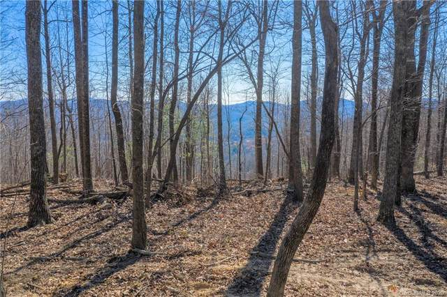 0000 Pinnacle Mountain Road #3, Zirconia, NC 28790 (#3687391) :: Odell Realty