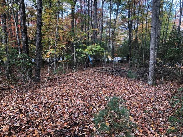 61 Old Hickory Trail #119, Hendersonville, NC 28739 (#3687643) :: LePage Johnson Realty Group, LLC