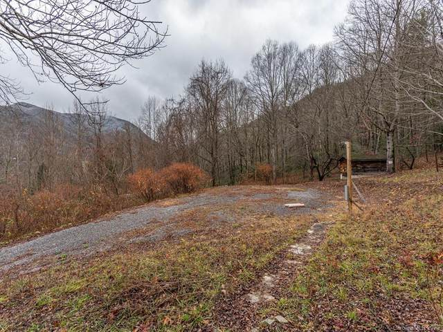 255 Sheepback Mountain Road, Maggie Valley, NC 28751 (#3687764) :: The Premier Team at RE/MAX Executive Realty