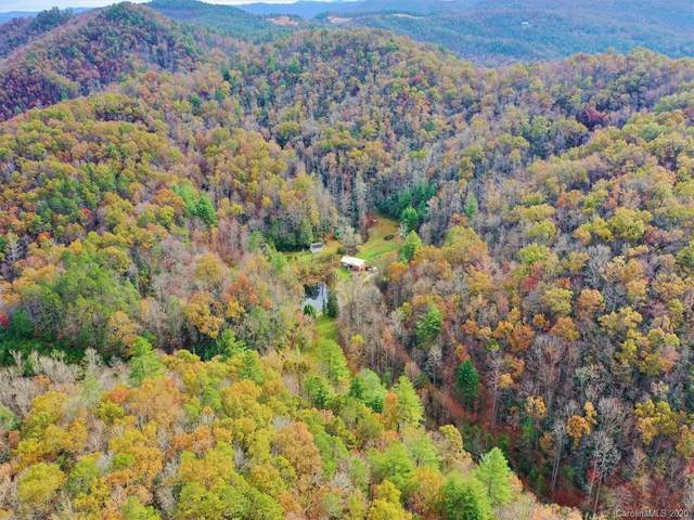 1555 Frozen Creek Road, Brevard, NC 28712 (#3687978) :: Puma & Associates Realty Inc.