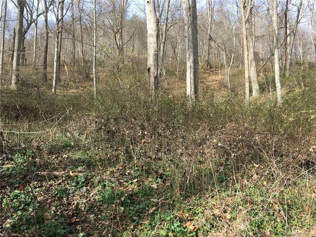 Lot 15/16 Coyote Hollow Road 15/16, Waynesville, NC 28785 (#3688320) :: Mossy Oak Properties Land and Luxury